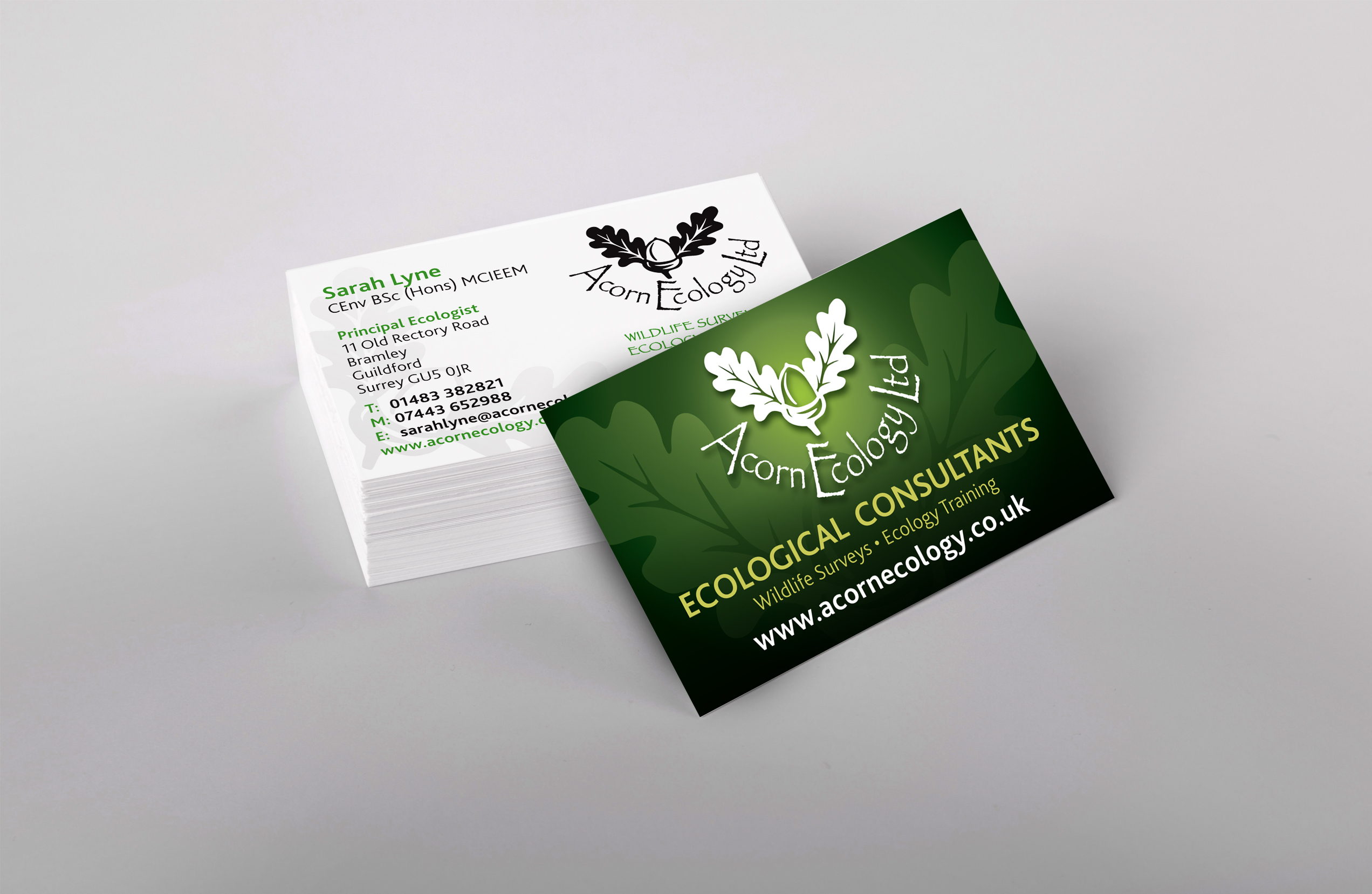 Acorn Ecology business cards Six Degrees Marketing