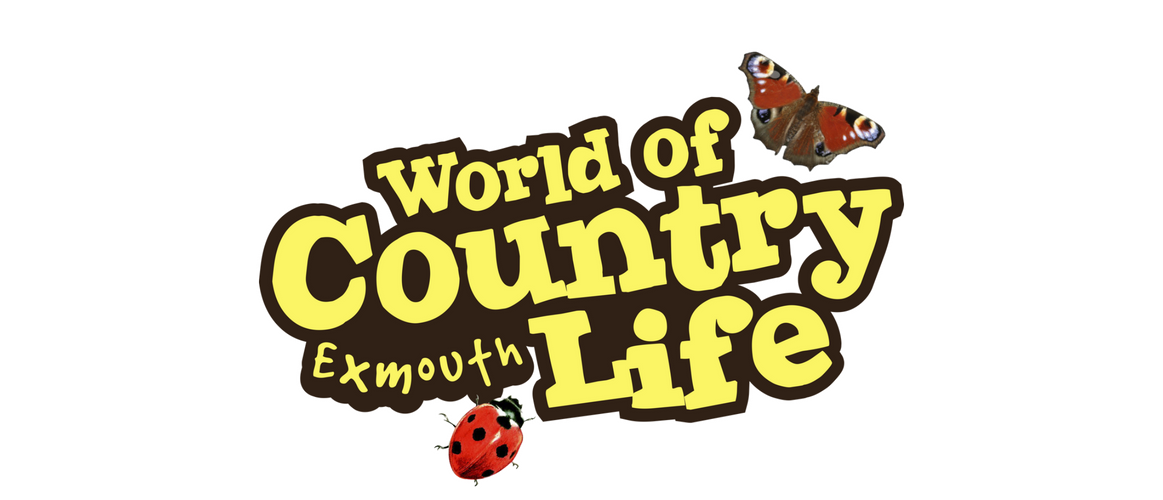 World of Country Life Six degrees Marketing